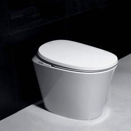 R500 automatic toilet