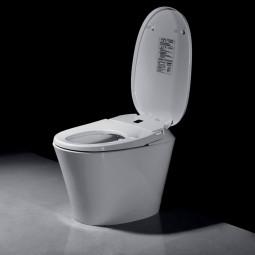 Inodoro japonés R500