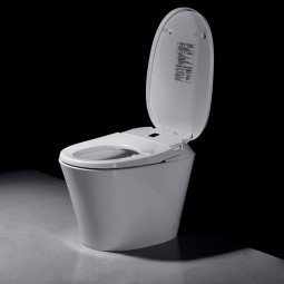 Japanese toilet R500