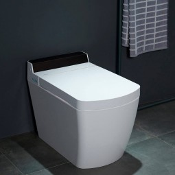 VOGO contemporary toilet