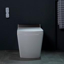 Smart Japanese toilet