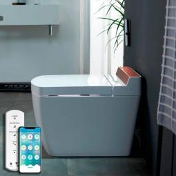 VOGO SL670 Japanese toilet