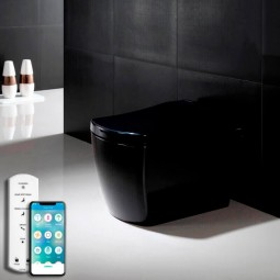 Design black toilet