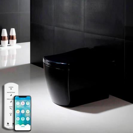 Inodoro negro de diseño