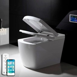 Automatic modern toilet
