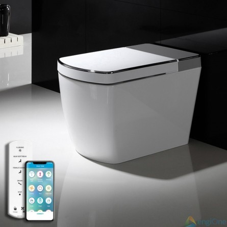 White and gray toilet SL600