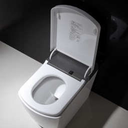 Vater VOGO Smart toilet