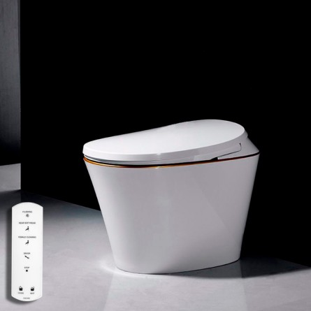 Japanese toilet with R500 remote control