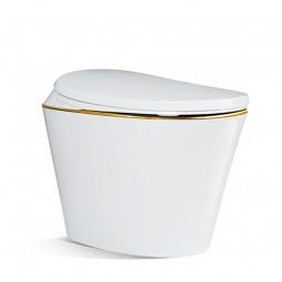 Japanese toilet R570